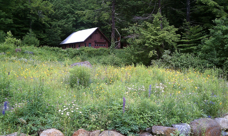 Earth Roots - Lake Placid Landscaping - Pictures - Lake Placid, New York - Adirondacks 2